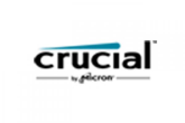 crucial0FBAB119-9276-224C-1F93-C5BAD1EF40BD.jpg