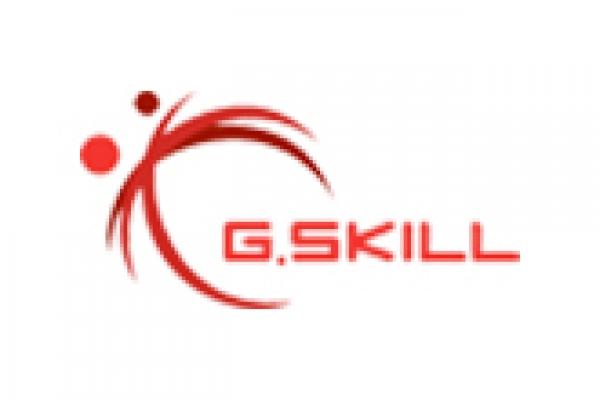 gskillDBB525CE-E2A4-27AC-01D8-7A2A1368023A.jpg