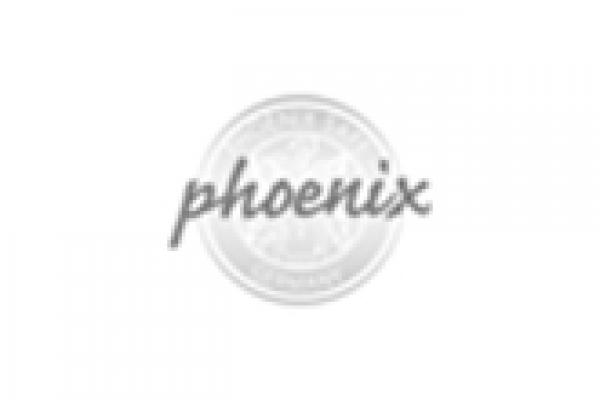 phoenixE9C74474-D92D-3D87-8866-D80930ABA649.jpg